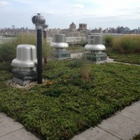 Co-op rooftop in Manhattan - installed by Greensulate